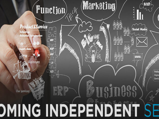 Becoming Independent Series course image